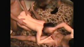 الفتيات مثل مشعرات سكس مواقع مترجمه ، والوقوف على جميع الساقين الأربعة.